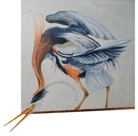 BandK_bird